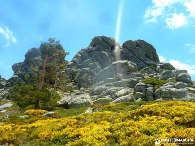 Siete Picos[Serie clásica]:Sierra del Dragón;escapadas desde madrid licencia federativa senderismo